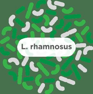 L. rhamnosus