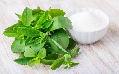 Stevia – Is It Safe?