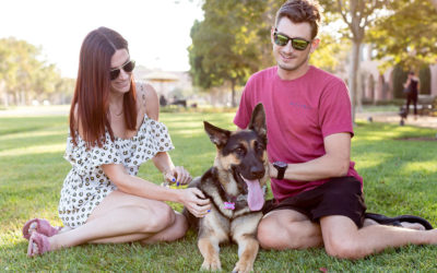 4 Ways Pets can Improve Your Mental Health