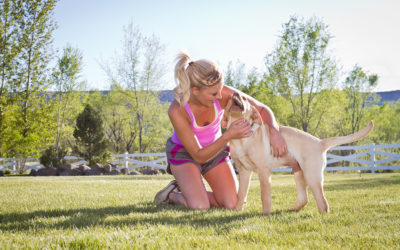 Why 'Dog-Speak' is Important for Bonding with Your Pet