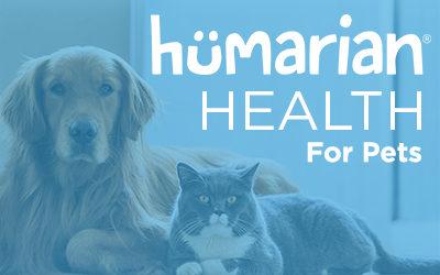 HHP Expert – Kristen Levine: Pet Anxiety Awareness