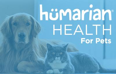 HHP BlogPaws – JaneA Kelley, Feline Diabetes