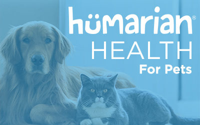 HHP Expert – Dani Landolt, Leader Dogs for the Blind