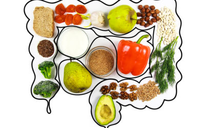 Good Foods for Gut Health – Part 2: Fiber